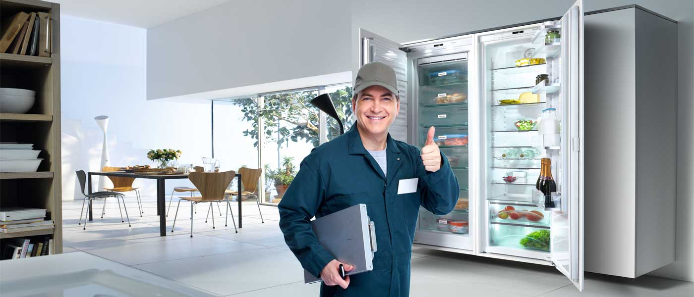 Ремонт холодильников в Митино